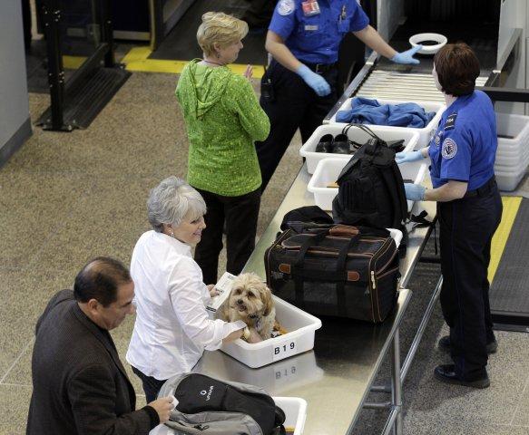 airport-security-merwjpg-dea989bf8df5ad20