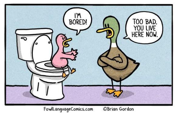 5a7259f4651f3b54e44e88aec42fc002--funny-duck-fowl-language-comics.jpg